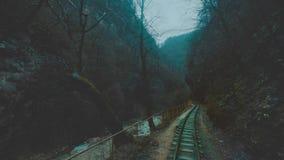 Um trem velho ou uma locomotiva estão viajando ao longo de uma estrada de ferro do estreito-calibre em um desfiladeiro estreito O video estoque