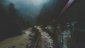Um trem velho ou uma locomotiva est?o viajando ao longo de uma estrada de ferro do estreito-calibre em um desfiladeiro estreito O vídeos de arquivo