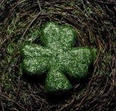 Um trevo verde em um fundo do musgo Fotografia de Stock Royalty Free