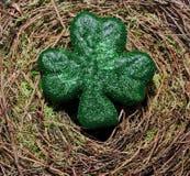Um trevo verde em um fundo do musgo Imagens de Stock