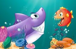 Um tubarão e uma piranha sob o mar Foto de Stock