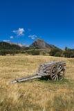 Um tumbril em um campo patagonian Foto de Stock