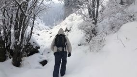 Um turista na floresta do inverno video estoque