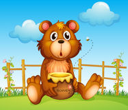 Um urso com potenciômetro do mel e abelha do mel Imagens de Stock Royalty Free