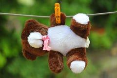 Um urso de peluche imagens de stock