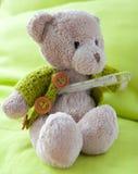 Um urso doente Fotografia de Stock Royalty Free