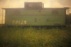 Um vagão coberto verde velho da estrada de ferro sobre um monte no Cairo, Illinois fotos de stock royalty free