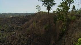 Um vale com algumas árvores e terra árida filme