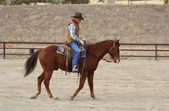Um vaqueiro que aquece seu cavalo imagem de stock