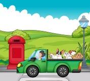 Um veículo verde com os cães na parte traseira ilustração do vetor