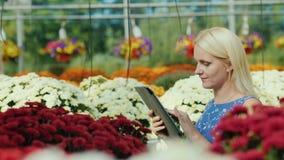 Um vendedor fêmea está trabalhando em um berçário com flores Contagens com uma tabuleta filme
