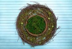 Um verde Moss Digital Newborn Backdrop do círculo para fotógrafo recém-nascidos foto de stock royalty free