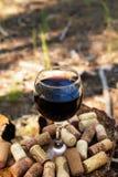 Um vidro com cortiça de um vinho tinto e do vinho em um coto em uma floresta do verão Imagens de Stock