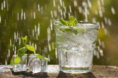 Um vidro da água de soda em uma placa idosa, na natureza Fotografia de Stock Royalty Free