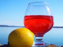 Um vidro da bebida vermelha imagens de stock
