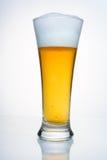 Um vidro da cerveja com condensação. Imagens de Stock Royalty Free