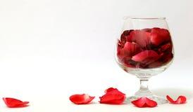 Um vidro das pétalas de Rosa   Imagens de Stock