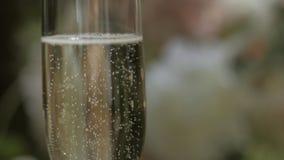 Um vidro do champanhe em um fundo borrado Conceito da celebra??o video estoque