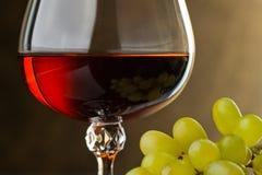 Um vidro do conhaque e da uva. Detalhe Fotos de Stock Royalty Free