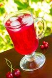 Um vidro do suco vermelho da cereja com cubos de gelo e cerejas e corintos vermelhos em um fundo natural Imagem de Stock