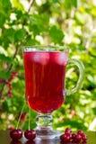 Um vidro do suco vermelho da cereja com cubos de gelo e cerejas e corintos vermelhos em um fundo natural Imagem de Stock Royalty Free
