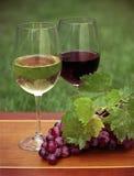 Um vidro do vinho branco e do vinho tinto Imagem de Stock