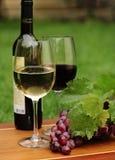 Um vidro do vinho branco e o vinho tinto e as uvas Fotografia de Stock