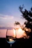 Um vidro do vinho em Santorini Fotos de Stock Royalty Free