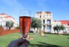 Um vidro do vinho do rosé em um parque imagens de stock