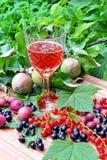 Um vidro do vinho tinto efervescente Foto de Stock Royalty Free