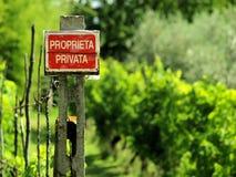 Um vinhedo em Úmbria, Itália Fotografia de Stock Royalty Free