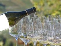 Um vinho de derramamento da garrafa em alguns vidros com o país de Langhe imagens de stock
