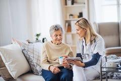 Um visitante da saúde com tabuleta que explica uma mulher superior como tomar comprimidos fotografia de stock royalty free