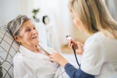 Um visitante da saúde que examina uma mulher superior doente que encontra-se na cama em casa com estetoscópio imagens de stock