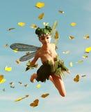 Um voo feericamente no céu Imagens de Stock Royalty Free