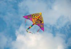 Um voo livre do papagaio Foto de Stock