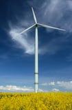 Um windturbine em um campo da violação Fotos de Stock