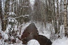 Um winterday agradável Fotos de Stock Royalty Free