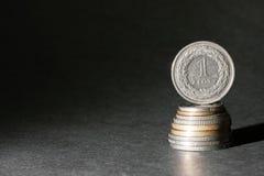 Um zloty Imagens de Stock