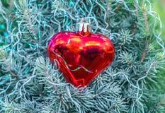 Uma árvore de abeto verde pequena com geada branca e coração de vidro vermelho com branco de decorações do Natal da geada foto de stock