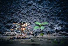 Uma ?rvore decorativa pequena com uma planta real borrada na parte traseira imagem de stock