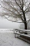 Uma árvore e umas tabelas pcnic no inverno. imagem de stock
