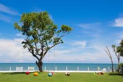 Uma árvore grande entre o dia do céu azul Foto de Stock Royalty Free
