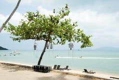 Uma árvore na frente do mar Imagem de Stock Royalty Free