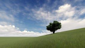 Uma árvore na paisagem da grama verde ilustração royalty free