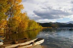 Uma árvore no lago Lugu Imagens de Stock