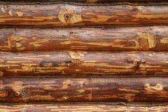 Uma árvore redonda, uma parede da madeira, um fundo fotografia de stock