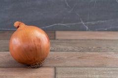 Uma única cebola no assoalho de madeira fotografia de stock