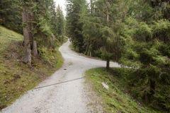 Uma única estrada da montanha racha em dois sentidos diferentes para dentro imagens de stock royalty free