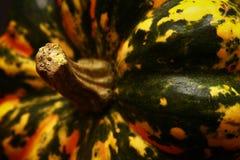 Uma abóbora colorida sarapintado do Dia das Bruxas imagem de stock